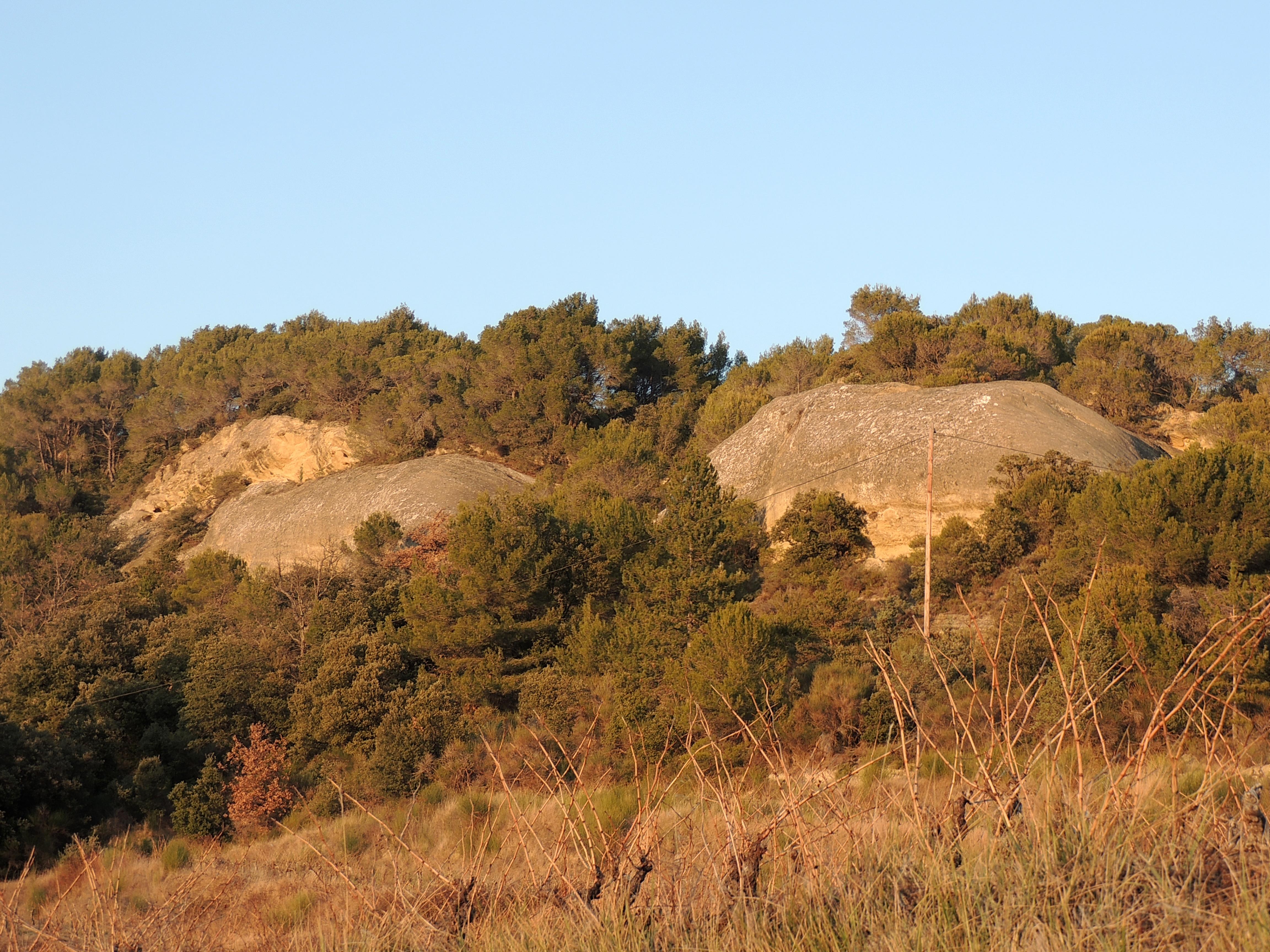 le-domaine-roche-coucourde